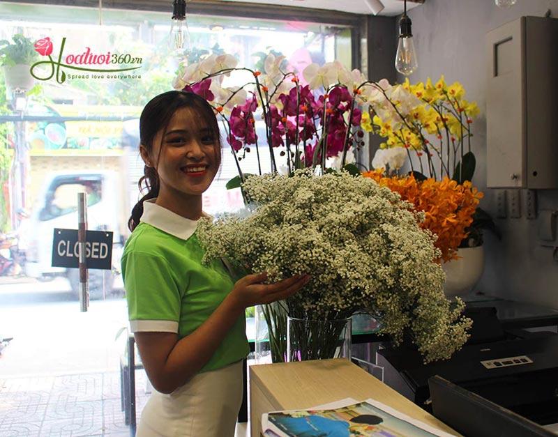 Shop hoa lan hồ điệp giá rẻ 14