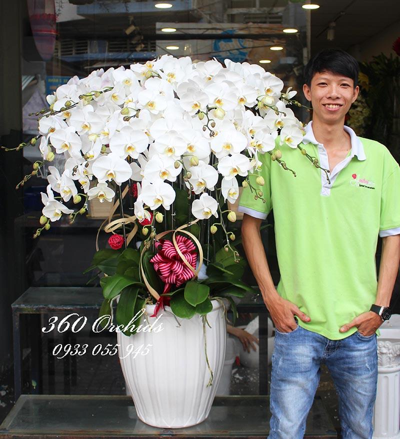 Shop hoa lan hồ điệp giá rẻ 22