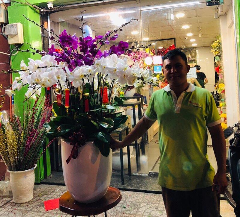 Shop hoa lan hồ điệp giá rẻ 25