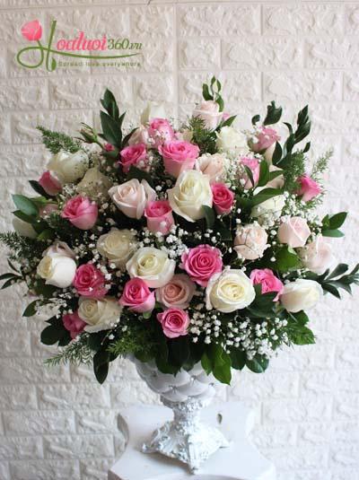 Bình hoa chúc mừng - Dành cho phái đẹp